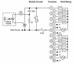 IC694MDL310 Wiring